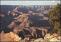 Grand Canyon - send as a greeting card